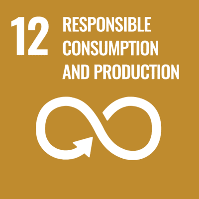 UN Goal - responsible consumption and production